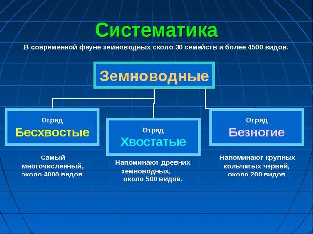 Систематика В современной фауне земноводных около 30 семейств и более 4500 ви...