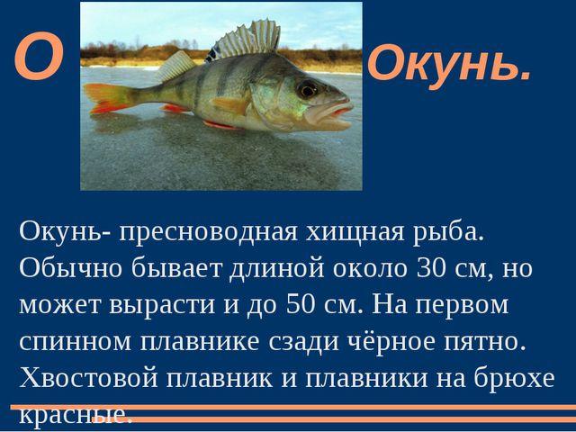 Окунь- пресноводная хищная рыба. Обычно бывает длиной около 30 см, но может в...