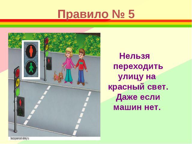 Правило № 5 Нельзя переходить улицу на красный свет. Даже если машин нет.