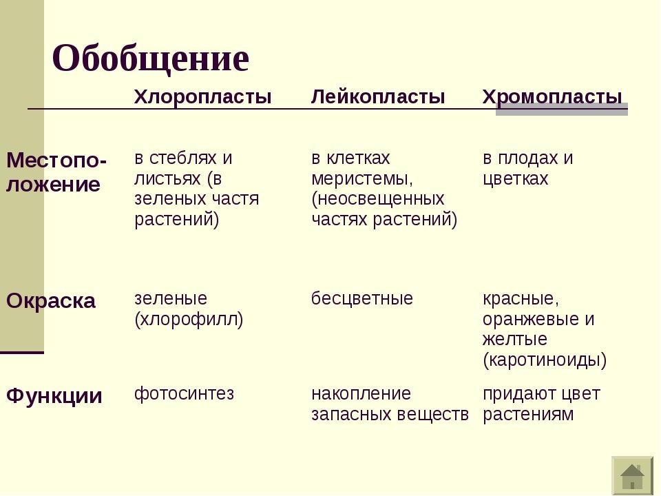 Обобщение ХлоропластыЛейкопластыХромопласты Местопо-ложениев стеблях и ли...