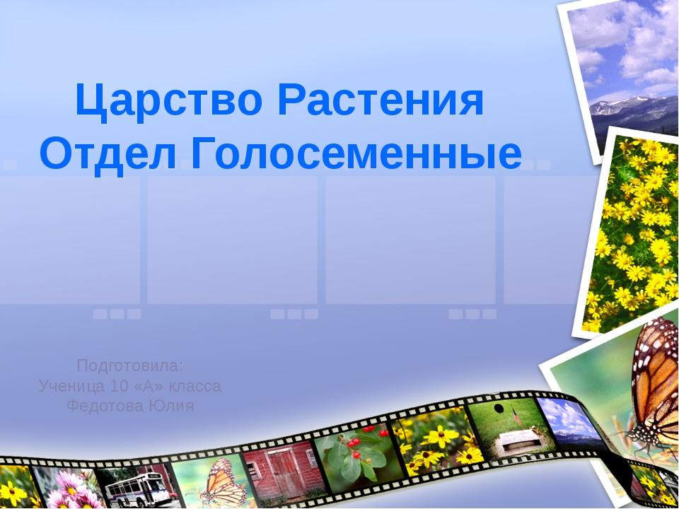 Царство Растения Отдел Голосеменные Подготовила: Ученица 10 «А» класса Федото...