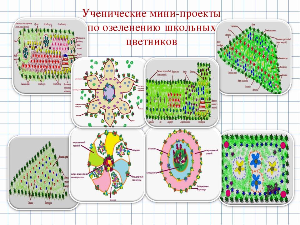 Ученические мини-проекты по озеленению школьных цветников