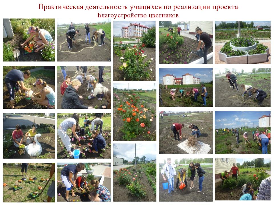 Практическая деятельность учащихся по реализации проекта Благоустройство цвет...