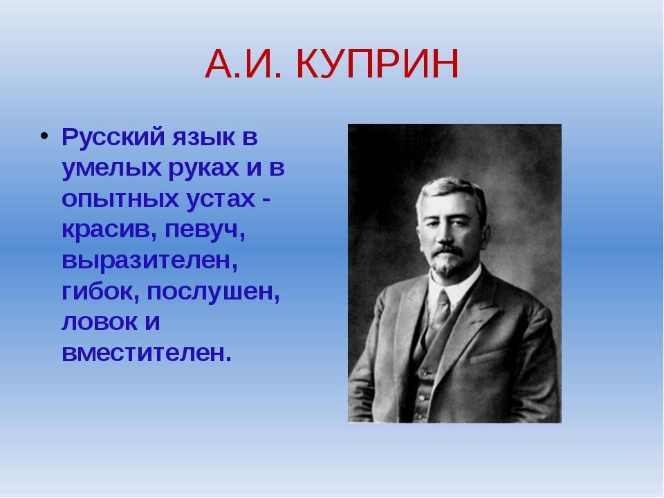 А.И. КУПРИН Русский язык в умелых руках и в опытных устах - красив, певуч, вы...