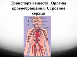 Транспорт веществ. Органы кровообращения. Строение сердца