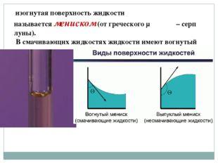 изогнутая поверхность жидкости называетсямениском(от греческого μηνισκος –
