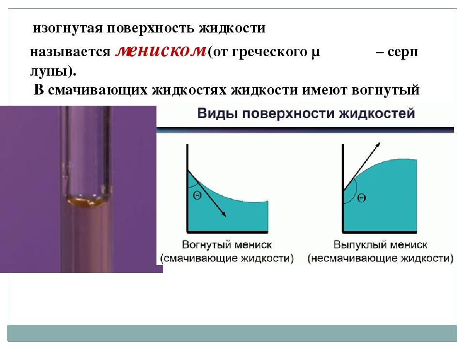 изогнутая поверхность жидкости называетсямениском(от греческого μηνισκος –...