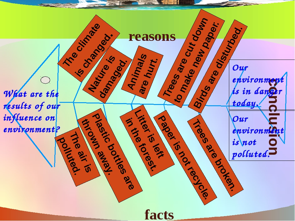What are the results of our influence on environment? facts reasons conclusi...