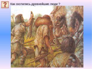 Как охотились древнейшие люди ?