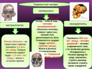 Первобытный человек австралопитек питекантроп неандерталец Южная обезьяна – н