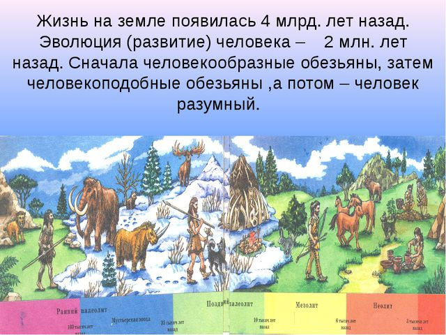 Жизнь на земле появилась 4 млрд. лет назад. Эволюция (развитие) человека – 2...