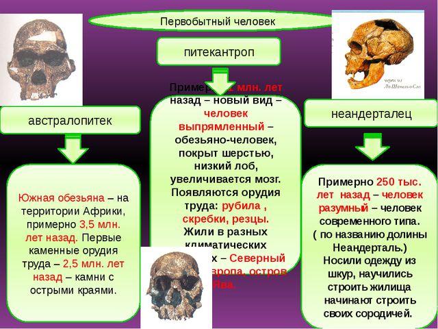 Первобытный человек австралопитек питекантроп неандерталец Южная обезьяна – н...