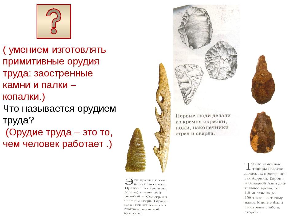( умением изготовлять примитивные орудия труда: заостренные камни и палки –...