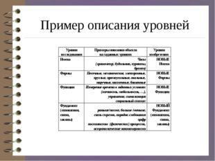 Пример описания уровней