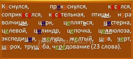 16784_620047da059309cebe0e2c5b372d5c6c.jpg.jpg