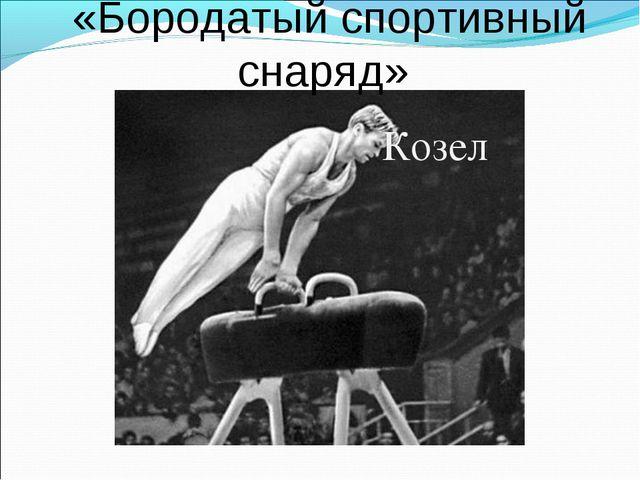 «Бородатый спортивный снаряд» Козел
