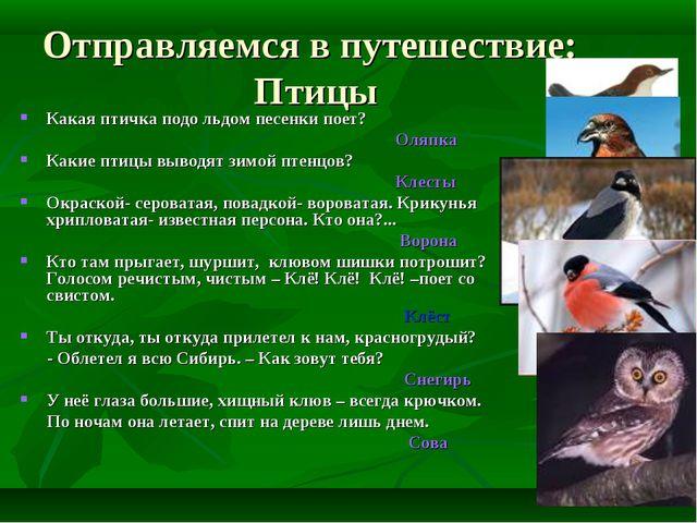 Отправляемся в путешествие: Птицы Какая птичка подо льдом песенки поет? Оляпк...