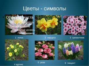 Цветы - символы 1 лотос 2 нарцисс 3 хризантема 4 адонис 5 роза 6 гиацинт
