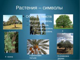 Растения – символы 1 сосна 2 кедр 3 дуб 4 осина 5 финиковая пальма 6 оливково