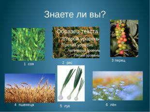 Знаете ли вы? 1 соя 2 рис 3 перец 4 пшеница 5 лук 6 лён