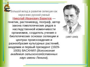 Большой вклад в развитие селекции как науки внес русский ученый Николай Ивано
