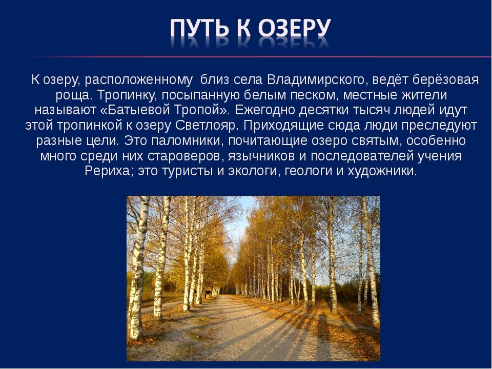 К озеру, расположенному близ села Владимирского, ведёт берёзовая роща. Тропи...