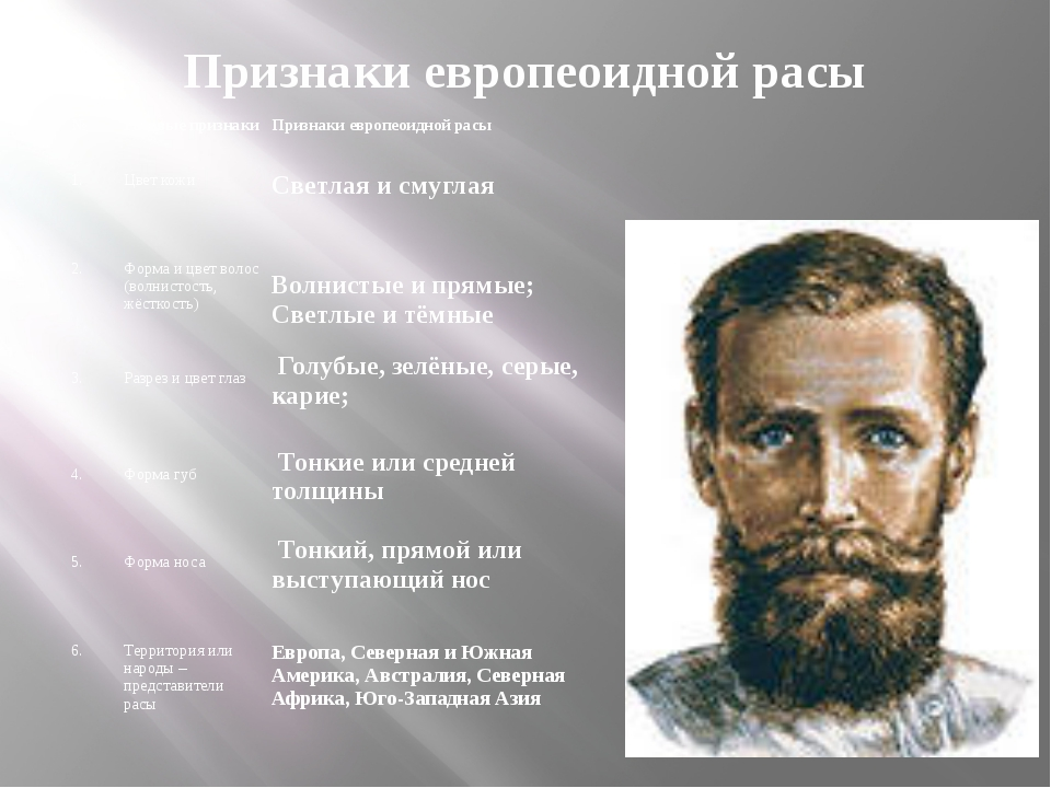 Признаки европеоидной расы  №  Расовые признаки   Признаки европеоидной р...