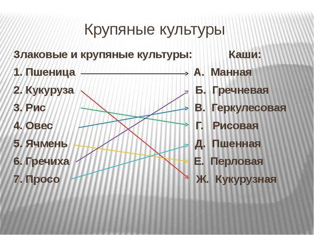 Вавилов Николай Иванович 1887 - 1943 Коллекция початков кукурузы в кабинете Н...