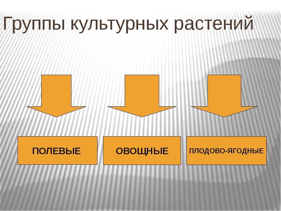 Группа культурных растений Группа культурных растений Подгруппы культурных ра...