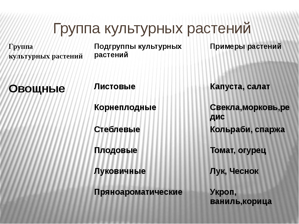Группа культурных растений Группа культурных растений Подгруппы культурных р...