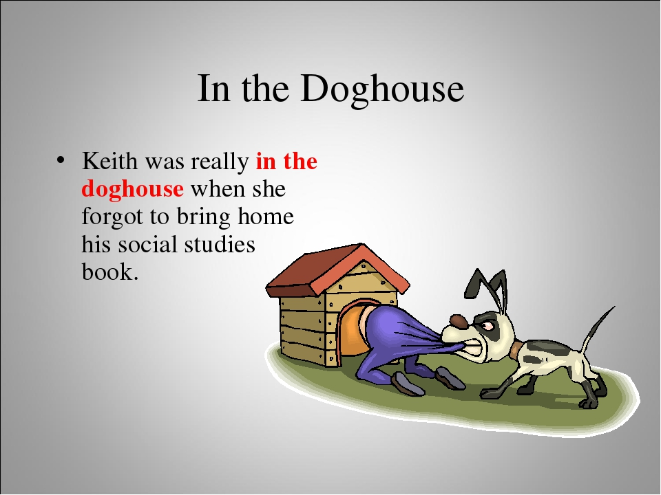 In the Doghouse Keith was really in the doghouse when she forgot to bring hom...