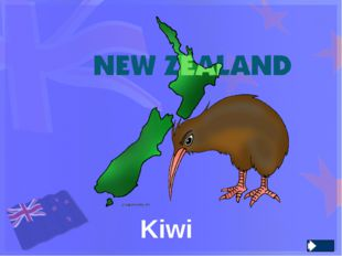 What two big islands does New Zealand consist of ? North and South Island Nor