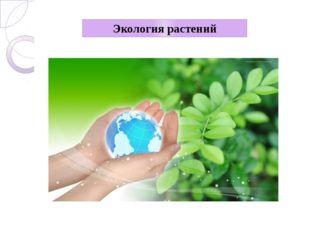 Экология растений