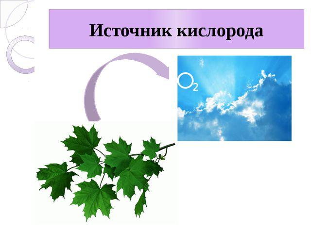 Источник кислорода