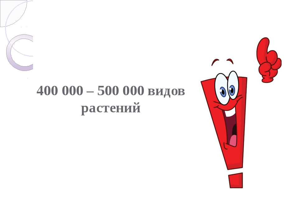 400 000 – 500 000 видов растений