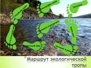 Экослед Биография реки Название реки Растительный мир Животный мир Человек и