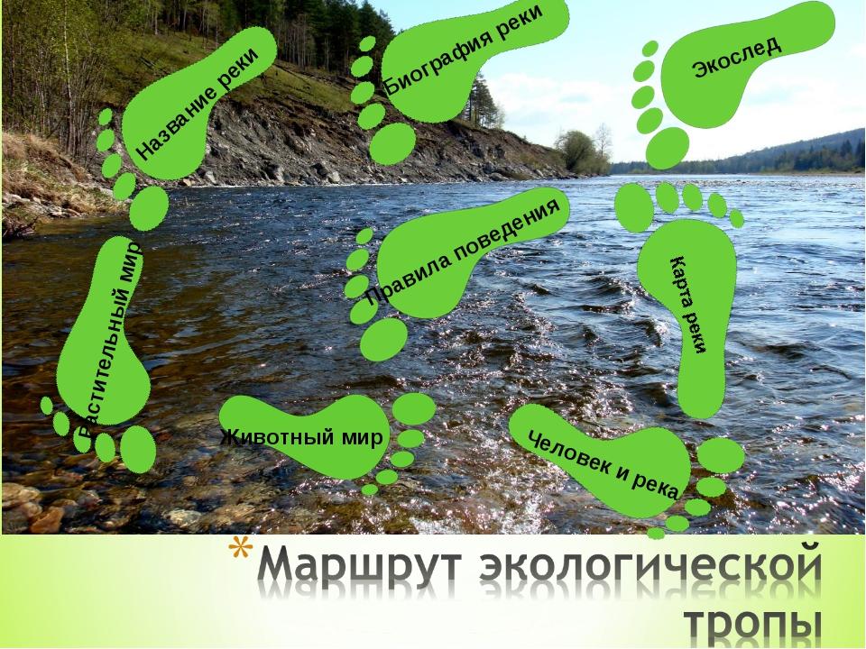 Экослед Биография реки Название реки Растительный мир Животный мир Человек и...