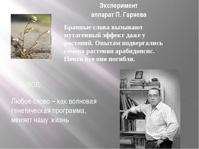 Эксперимент аппарат П. Гаряева Бранные слова вызывают мутагенный эффект даже...
