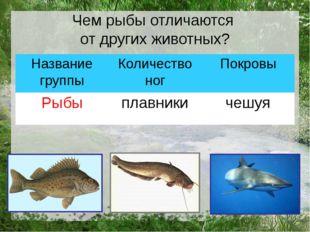 Чем рыбы отличаются от других животных? Название группы Количество ног Покро