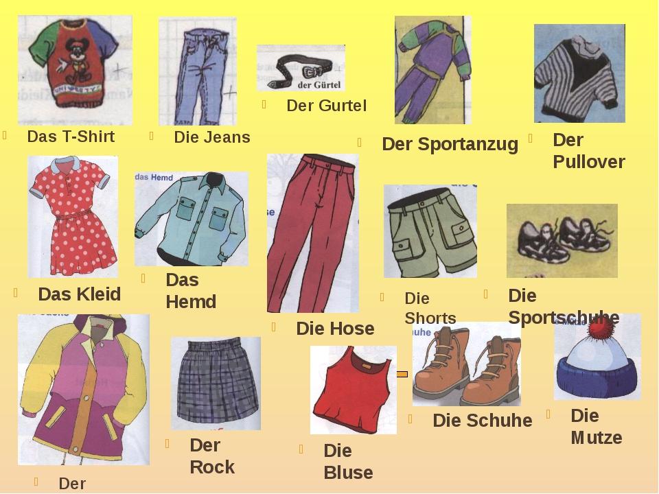 Das T-Shirt Die Jeans Der Gurtel Das Kleid Das Hemd Die Hose Der Sportanzug D...
