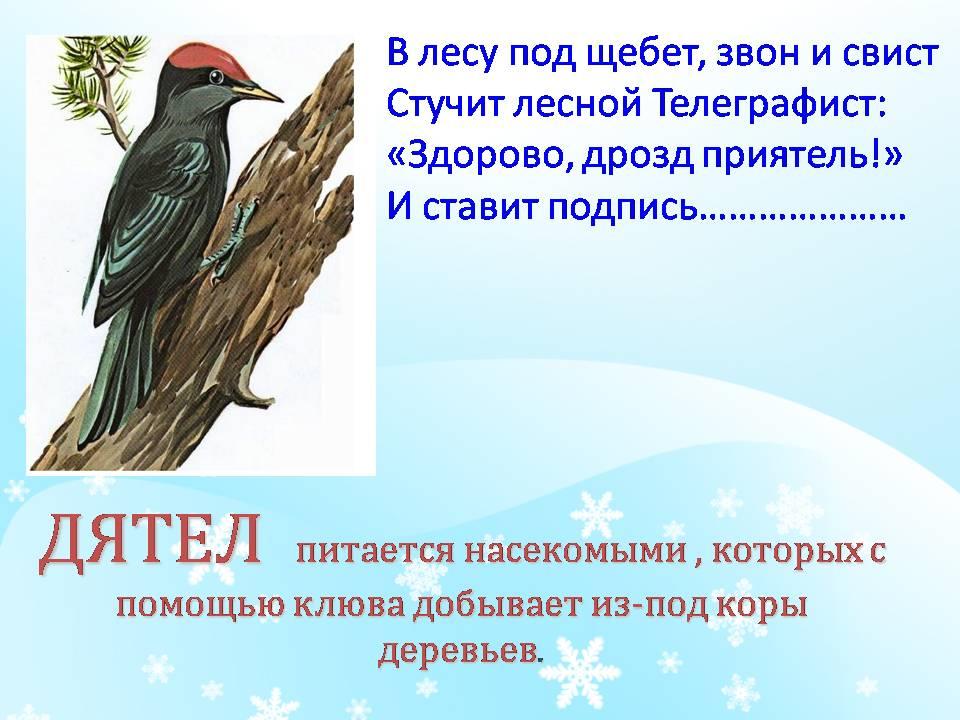 http://pwpt.ru/uploads/presentation_screenshots/628f92bf0d6831eac9a5fd81c74d6ddd.JPG