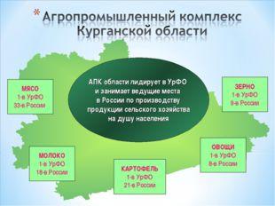МЯСО 1-в УрФО 33-в России ЗЕРНО 1-в УрФО 9-в России АПК области лидирует в Ур