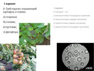 1 вариант 8. Гриб-паразит, поражающий картофель и томаты: а) спорынья; б) го