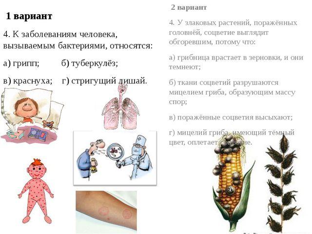 1 вариант 4. К заболеваниям человека, вызываемым бактериями, относятся: а) г...