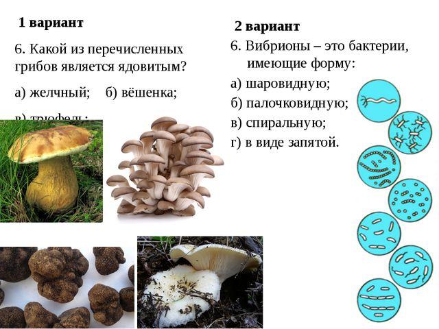 1 вариант 6. Какой из перечисленных грибов является ядовитым? а) желчный; б)...