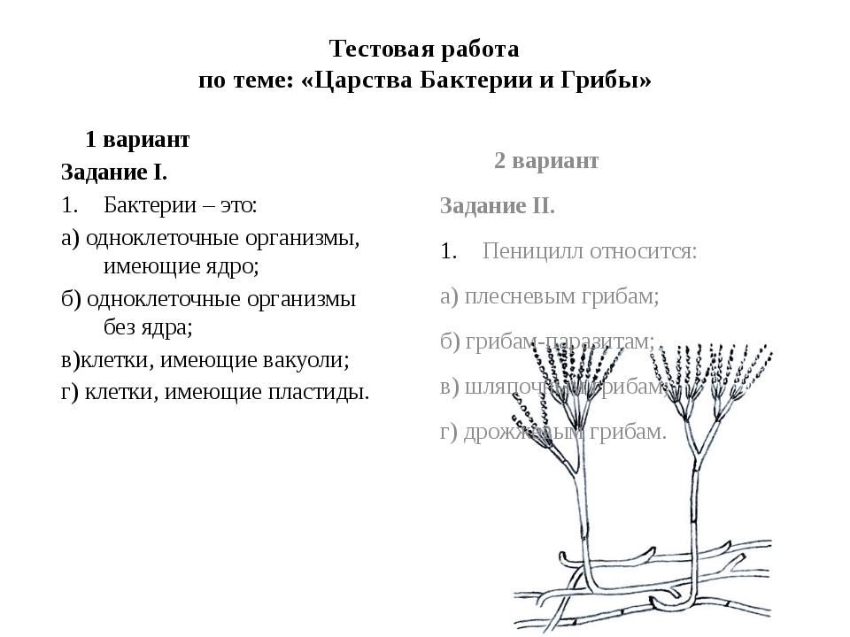 Тестовая работа по теме: «Царства Бактерии и Грибы» 2 вариант Задание II. Пен...