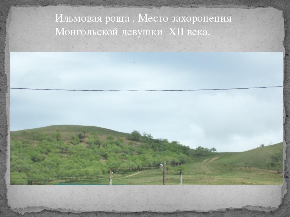 Ильмовая роща . Место захоронения Монгольской девушки XII века.