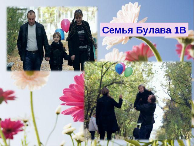 Семья Булава 1В