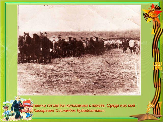 Торжественно готовятся колхозники к пахоте. Среди них мой прадед Камарзаев Со...