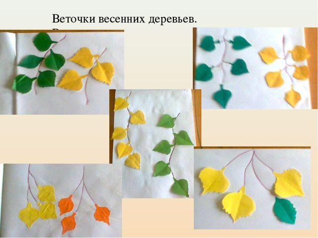 Веточки весенних деревьев. В